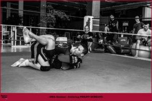 MMA Seminar 2